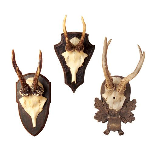 Antique Inspired Antlers on Plaques - Set of 3 For Sale