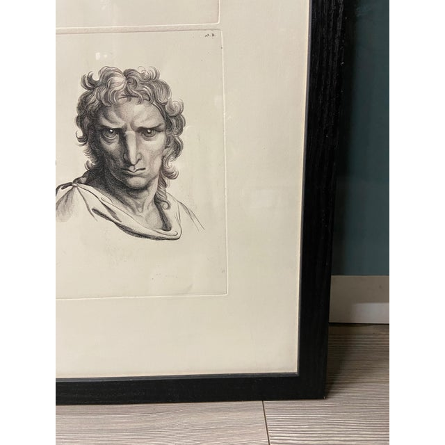 Man as Eagle - Physiognomic Heads Series Framed Illustration by Charles Le Brun For Sale - Image 4 of 12