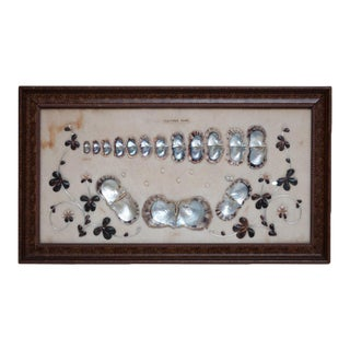 1920s Japanese Akoya Pearls Display For Sale