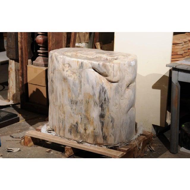 This large-sized petrified wood table base is indeed impressive! The petrified wood base has a smooth polished finish...