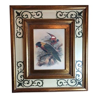Parrots II Award Winning Print/Etching in Custom Frame For Sale