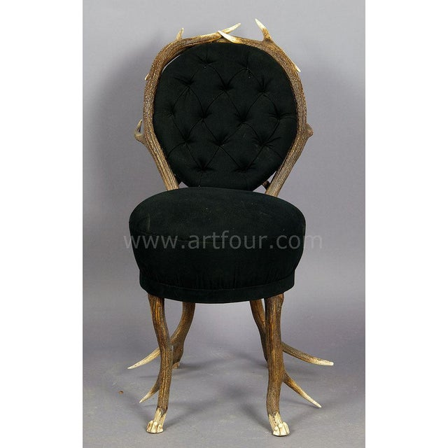 Black Forest Pair Of Rare Antler Parlor Chairs, French Ca. 1860 For Sale - Image 3 of 5