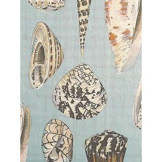 Sample, Scalamandre Coquina, Multi on Sea Blue Fabric For Sale