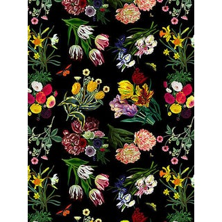 Nicolette Mayer for Scalamandre Flora & Fauna, Black Wallpaper For Sale