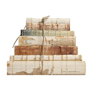 Weathered Vintage Classics Book Set, S/7 For Sale