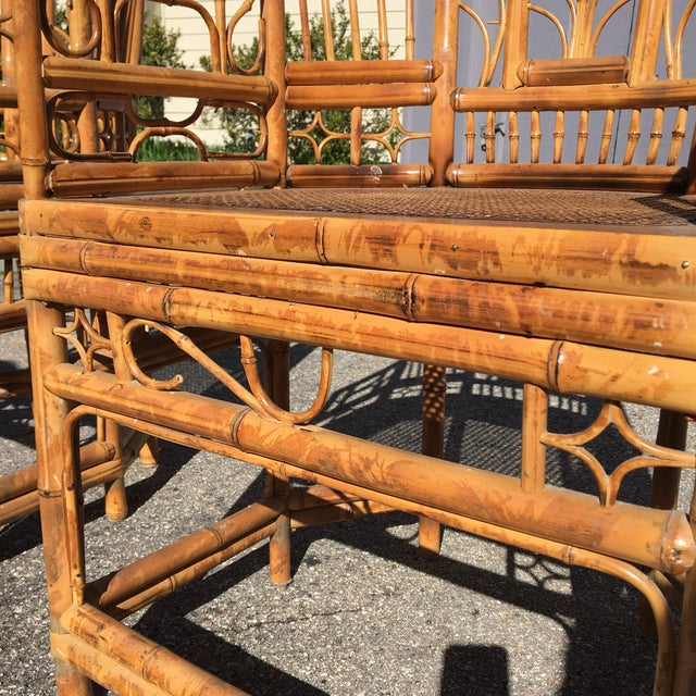 1970s Vintage Brighton Pavilion Bamboo, Ratan and Cane Chairs- Set of 4 For Sale - Image 11 of 13