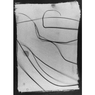 """Botanical Light Drawing 3,"" Rinne Allen For Sale"