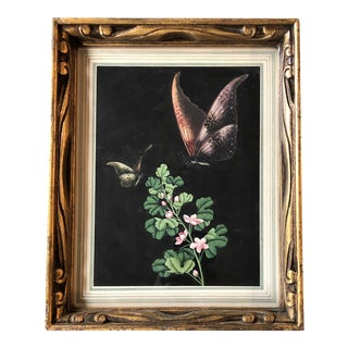 Original Period Deco Botanical With Butterflies Watercolor Period Frame For Sale