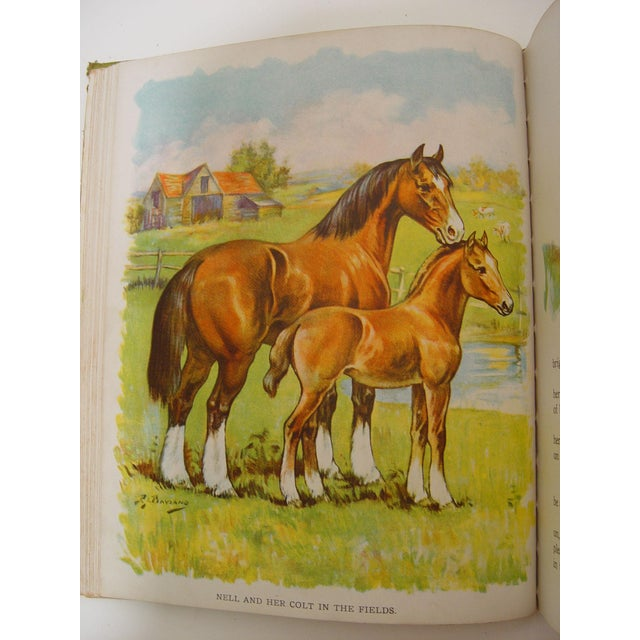 1928 Animal Friends Story Book For Sale - Image 7 of 10