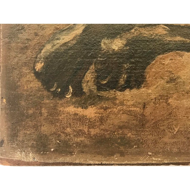 1920s Antique British Colonial Lion Lioness Jungle African Oil Painting on Board For Sale - Image 5 of 11