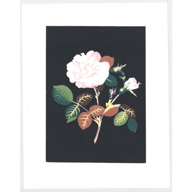 Traditional 1980s Floral Still Life Botanical Serigraph For Sale - Image 3 of 4