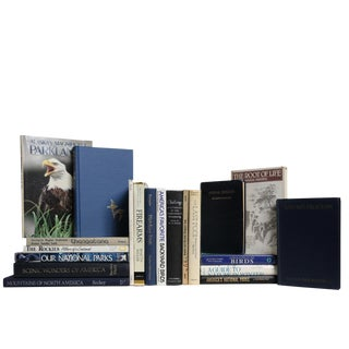 Midcentury Glacier Outdoor Book Set, S/20 For Sale