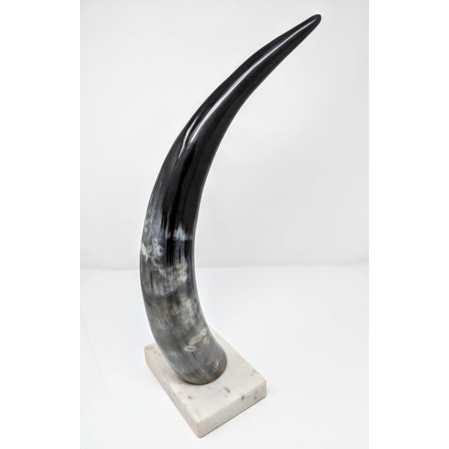 Early 21st Century Horn on Marble Base For Sale - Image 5 of 12