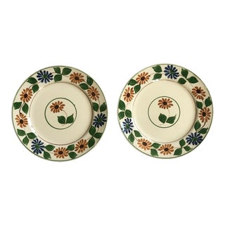 1920s Decorative English China Plates - Set of 2 For Sale