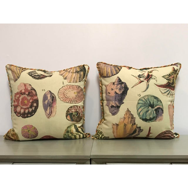 Specimen Sea Shell Print Decorative Throw Pillows - a Pair For Sale - Image 9 of 9
