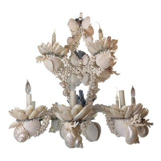 Large 8-Light Shell Chandelier For Sale