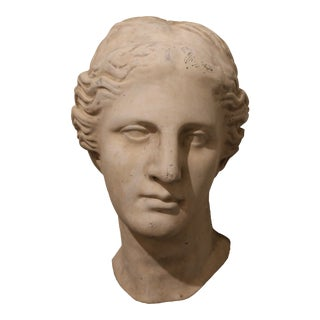Plaster Persephanie Head For Sale