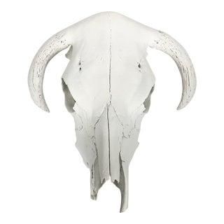 Painted White Animal Skull Wall Hanging