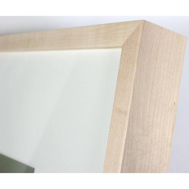 "Contemporary Gaétan Caron ""Yellow & White"" Abstract Floral Framed Photograph, Mendocino, Ca, 2014 2014 For Sale - Image 3 of 6"