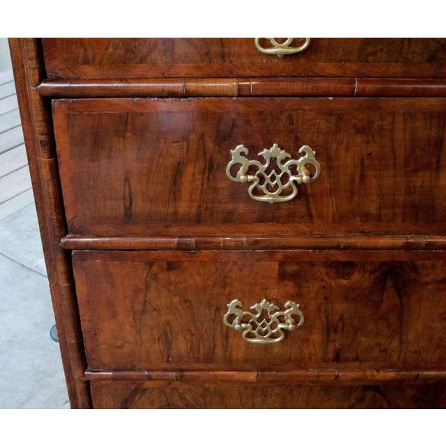 A handsome English George II walnut veneered and oak 5-drawer chest; the rectangular top above two short and three long...