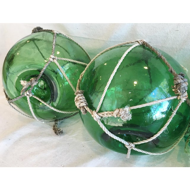 Jumbo Nautical Green Glass Fishing Floats - Set of 3 For Sale - Image 4 of 8