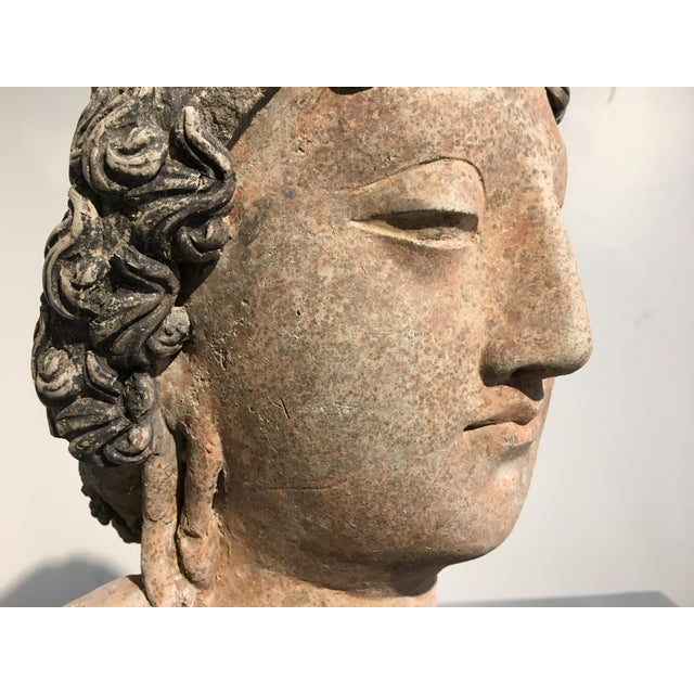 Gandharan Terracotta Head of a Bodhisattva, 3rd - 5th century - Image 10 of 10