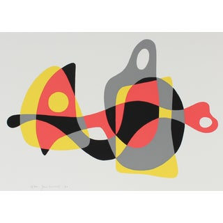 Jane Mitchell Modernist Abstracted Serigraph, 1970 1970 For Sale