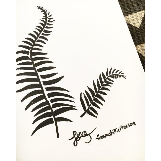 Fern Original Drawing by Hannah McPherson For Sale - Image 4 of 5