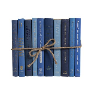 Modern Denim ColorPak - Decorative Books in Shades of blue For Sale