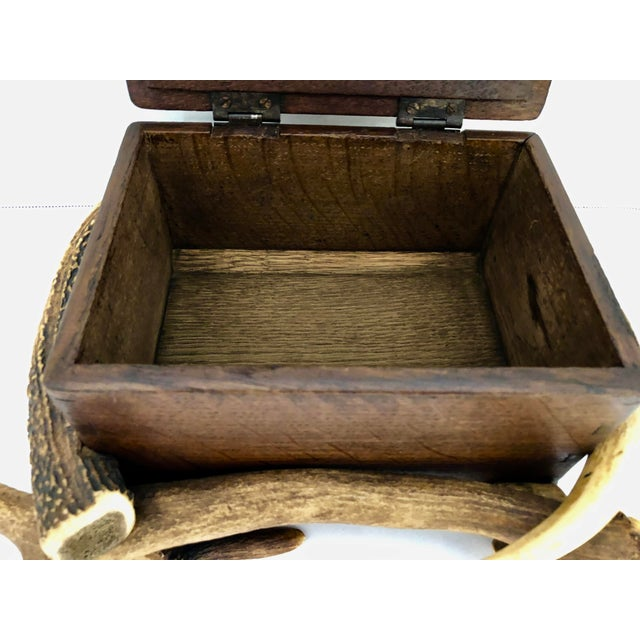 Black Forest Wood Box With Natural Antlers For Sale - Image 12 of 13