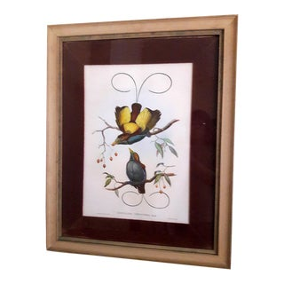 19th Century Mintern Bros Imp Hand Colored Lithograph by J. Gould and W. Hart For Sale