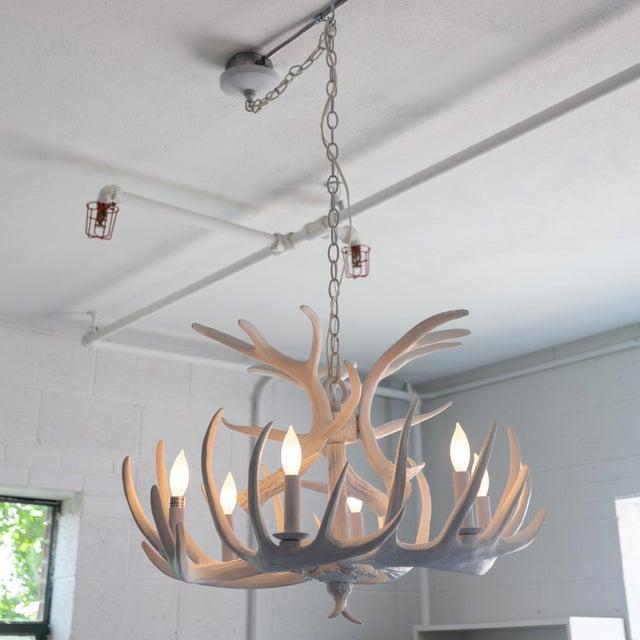 Hand Molded Antler Chandelier In White Floor Model Installed Our Showroom But