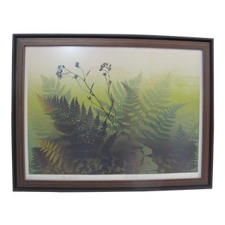 Elton Bennett Signed Nature Serigraph Print on Paper Ferns For Sale
