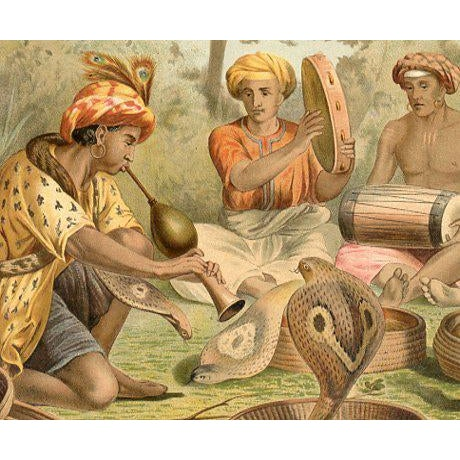 """original lithograph of Snake Charmers from a 1930s Italian natural history folio titled """"The Life of Animals"""". The print..."""