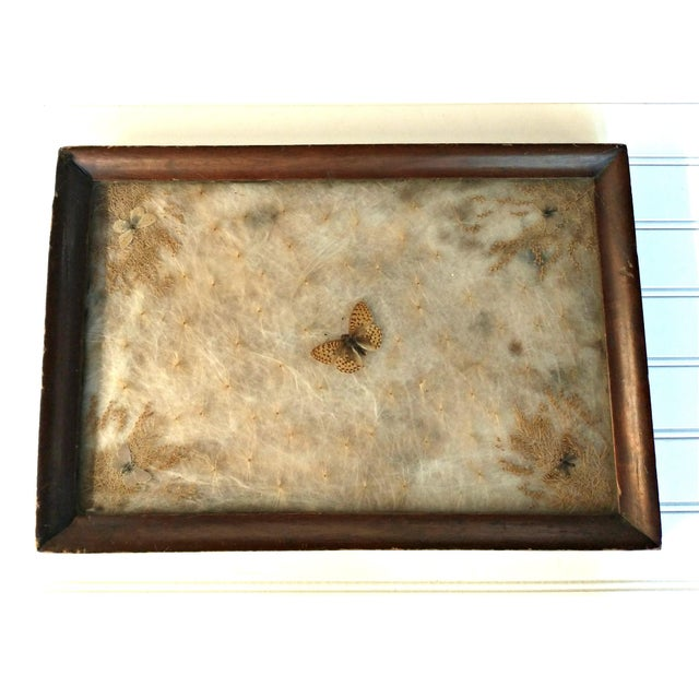 Antique Arts & Crafts Milkweed & Real Butterflies Serving Tray For Sale - Image 10 of 10