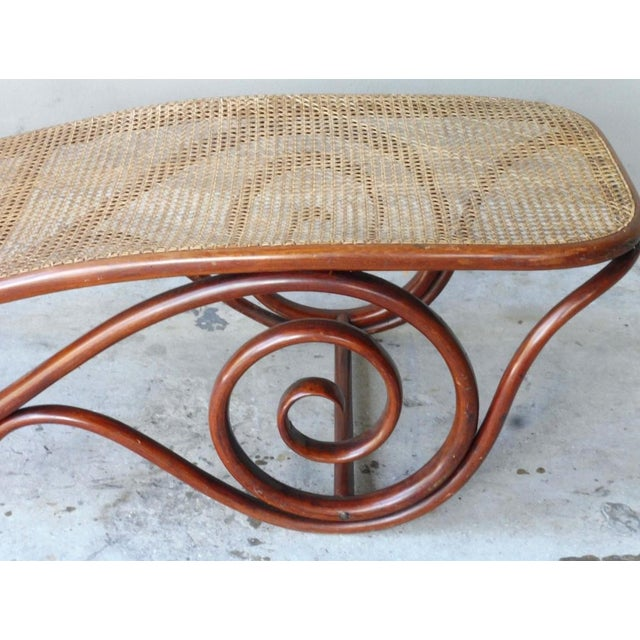 20th Century Mid-Century Modern Thonet Chaise Lounge Chair For Sale - Image 9 of 13