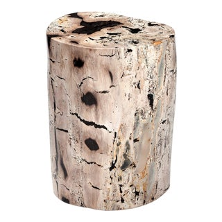 Vanessa Petrified Wood Side Table For Sale