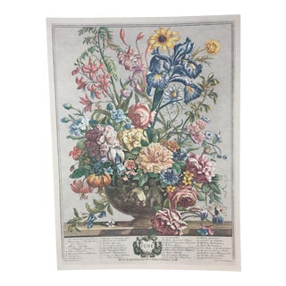 Unframed Robert Furber Print -Twelve Months of Flowers June For Sale