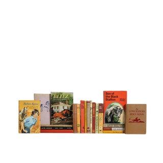Midcentury Horse Stories for Kids : Set of Twenty Decorative Books