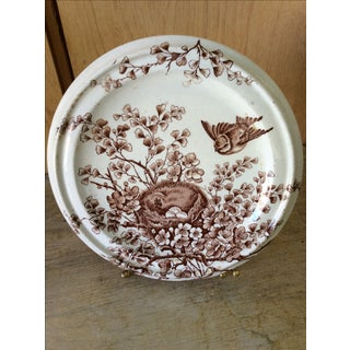 Shabby Chic Brown & White Birds Nest Cookie Plate Preview