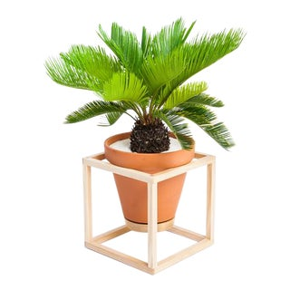 Trey Jones Studio Cube Frame Planter For Sale