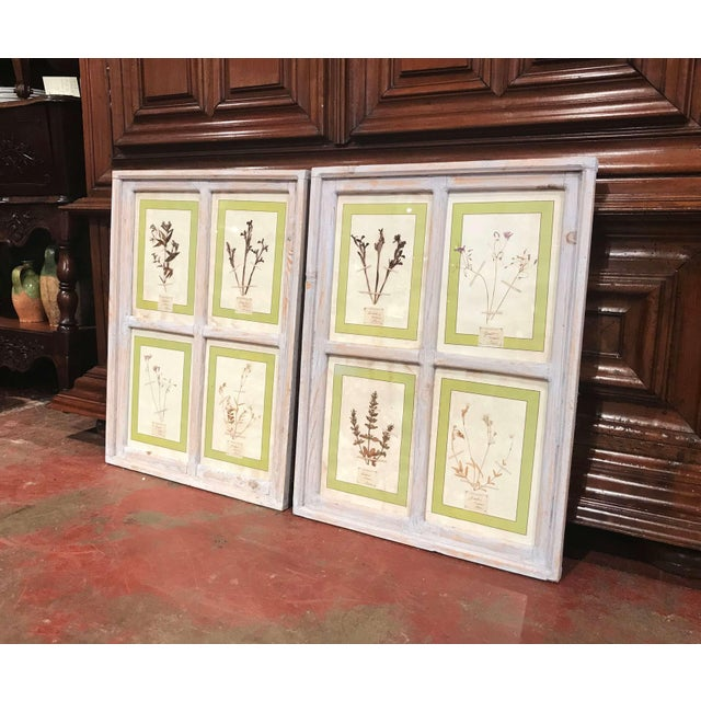 Decorate a wall with this elegant pair of framed botanical studies. Crafted in Italy circa 2000, each piece is made up of...