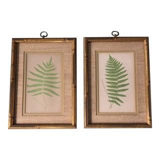Original Vintage Fern Prints in Vintage Faux Bamboo Frame 1960's For Sale