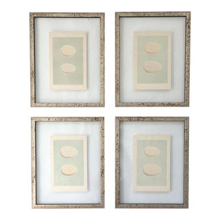 Antique Framed Morris Egg Prints - Set of 4 For Sale