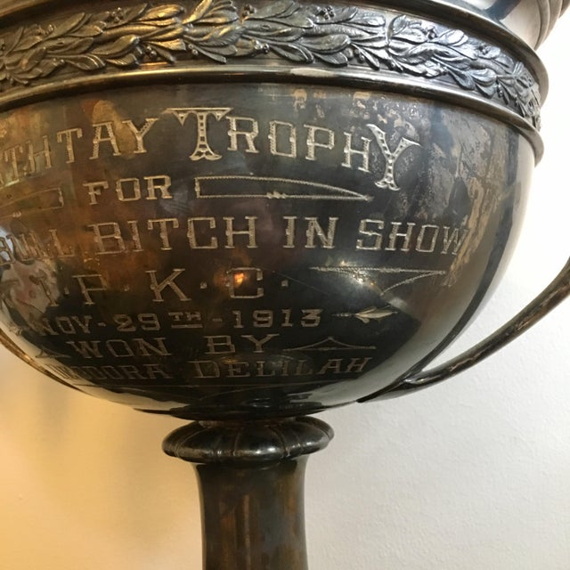 Traditional Early 1900's Oversized Dog Show Loving Cup For Sale - Image 3 of 10