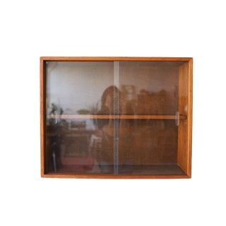 Vintage Mid Century Modern Hanging Teak & Glass Cabinet For Sale