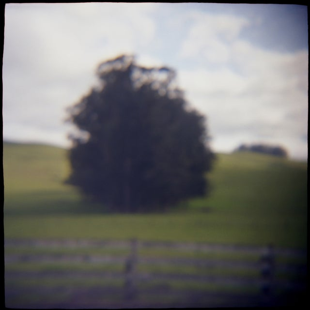 """Solo,"" film toy camera image from the series ""Remembered Landscapes."" Sonoma, Ca. 10x10 image printed on 11x14 archival..."