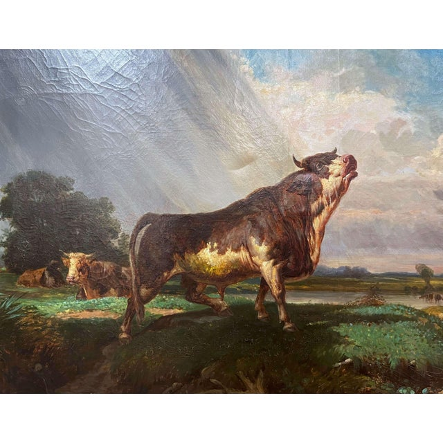 Gold 19th Century French Oil on Canvas Cow Painting in Carved Gilt Frame For Sale - Image 8 of 13