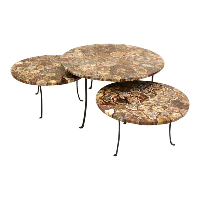 Set of Four Petrified Wood and Wrought Iron Coffee Tables For Sale