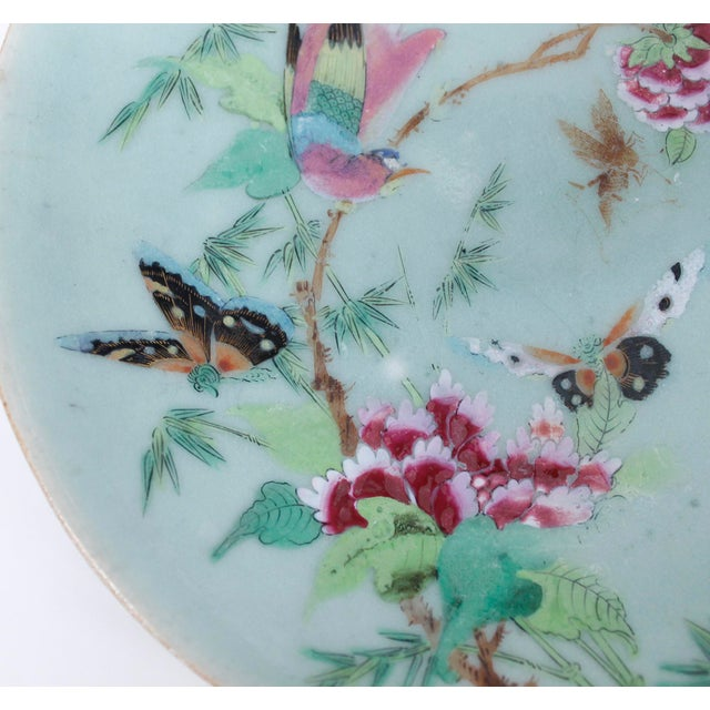 Late 19th Century 19th Chinese Export Rose Canton Celadon Porcelain Plates - Set of 3 For Sale - Image 5 of 12